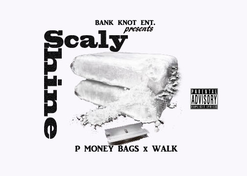 P Money Bags x Walk - Scaly Shine