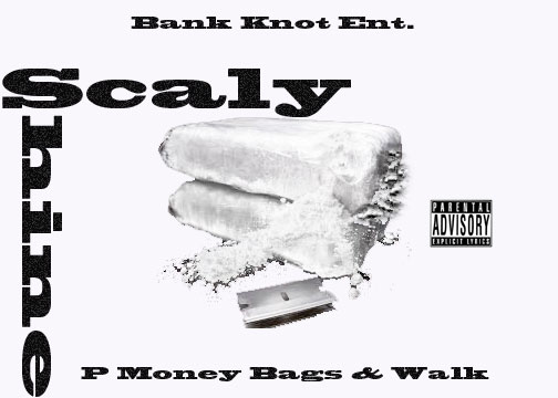 P Money Bags_Walk - Scaly Shine