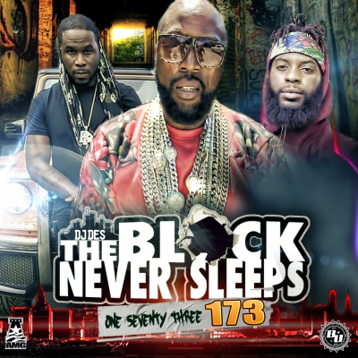 DJ Des - The Block Never Sleeps 173