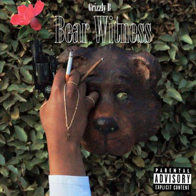 DJ S.R - Grizzly B - Bear Witness