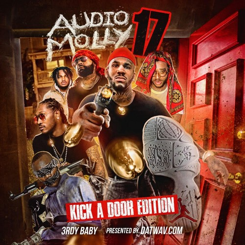 Audio Molly 17 (Kick A Door Edition)